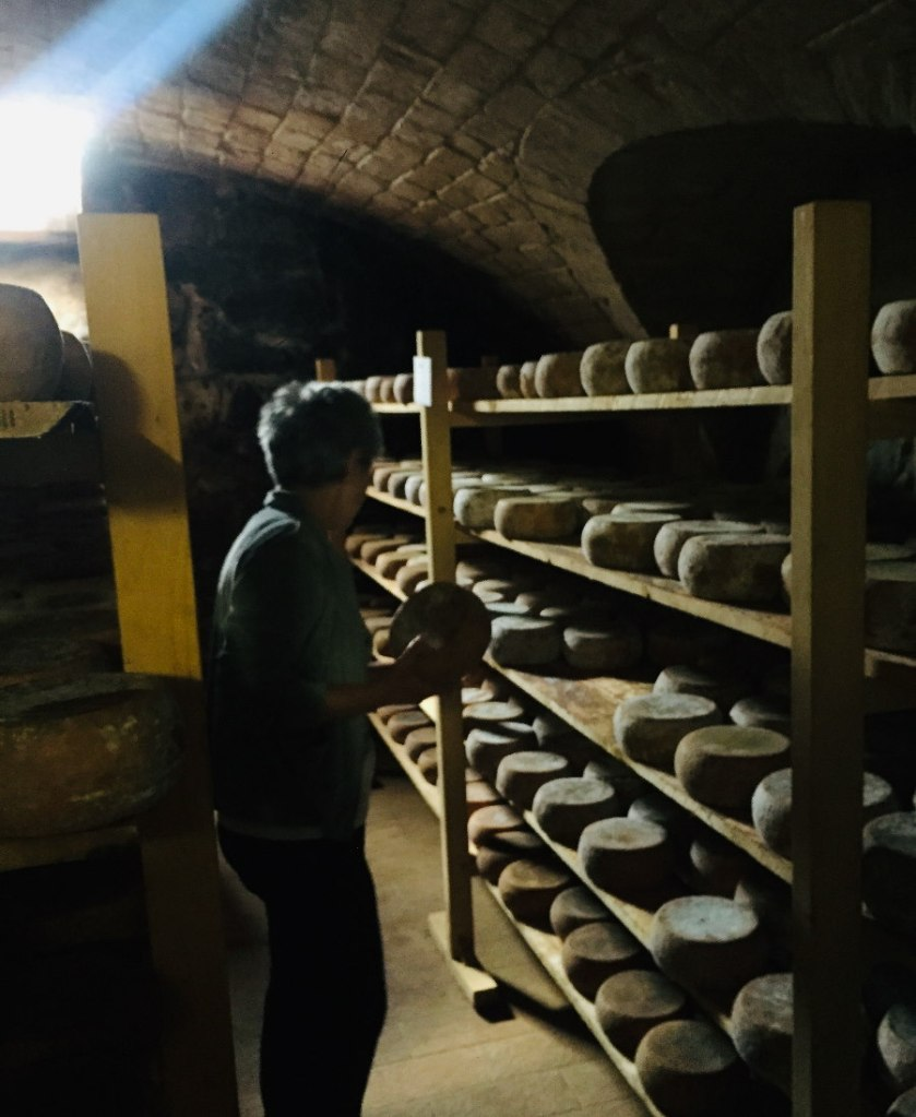 Cheese being stored on shelves in a darkened room