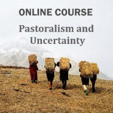 Online course: Pastoralism and Uncertainty